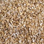 Pin Head Oatmeal 25kg
