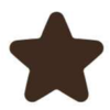 Dark Chocolate Star Decoration (480)