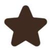 Dark Chocolate Star Decoration (480)